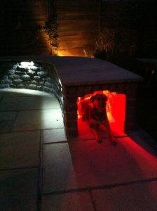 Infrafűtés kutyaházba