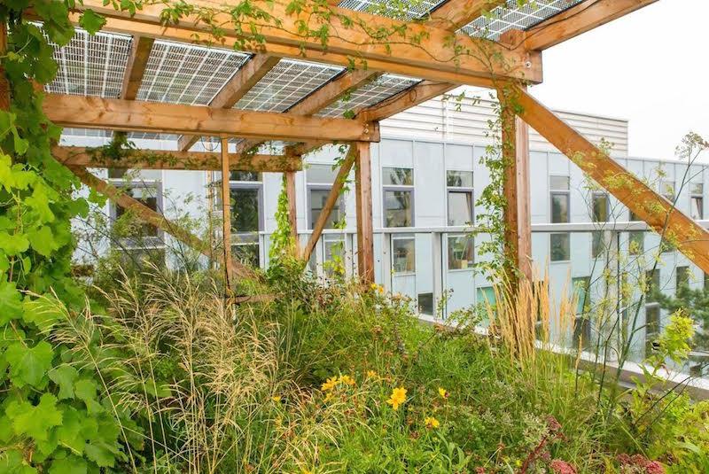 Napelemes tetőterasz évi 5500 kWh órányi zöldáramot termel.